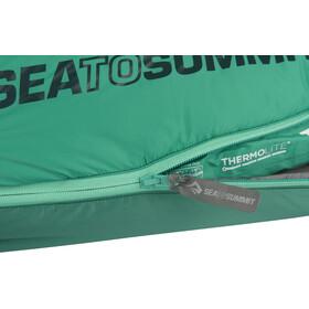 Sea to Summit Traverse TvIII Sovepose regular grøn